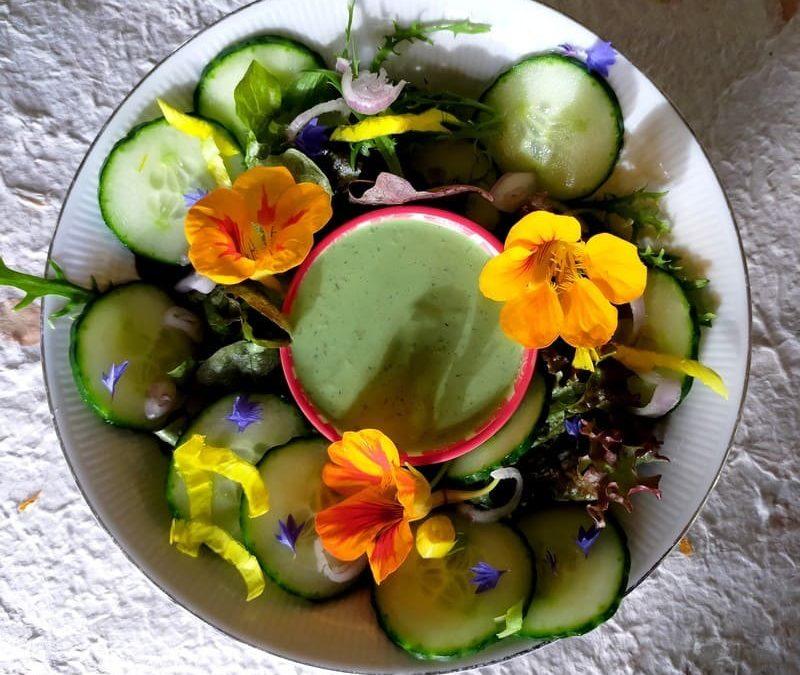 Wat kun je in juli met de planten en recepten uit het Basisboek Wilde Bladgroenten doen?